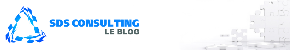 SDS CONSULTING : Le Blog